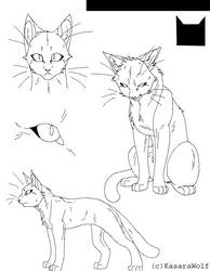 Warrior Cats CS Template by KasaraWolf