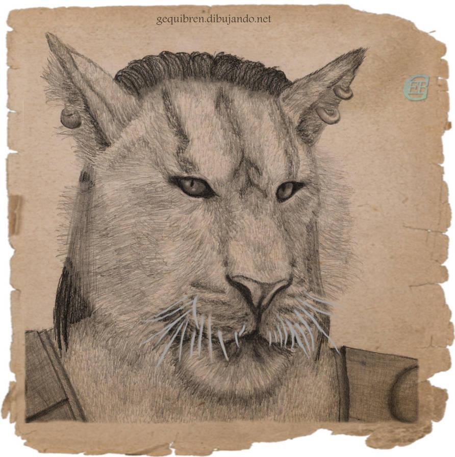 Elder Scrolls - Oblivion - Khajiit Portrait by Gequibren