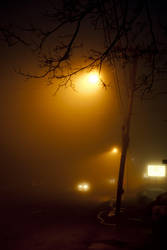 foggy college avenue by alyssa-k