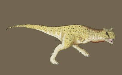 Carnotaurus by BlazingChicken64
