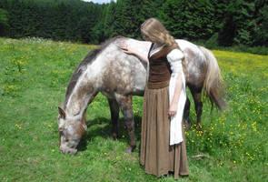 Shieldmaiden Outfit 3 by Lady--Eowyn