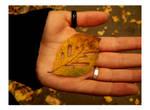 Thank You Autumn by JordanRobin