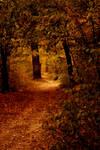 Lost In My Autumn by JordanRobin