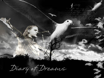 Diary of Dreams 21 by serialkiller07