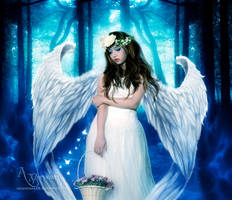 The Angel Lost in Forest by annemaria48