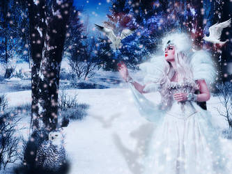 Winter Queen by annemaria48