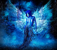 The strange Angel by annemaria48