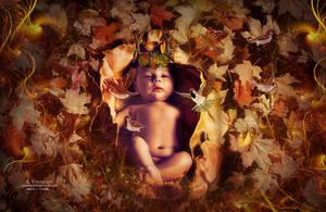 Autumn baby by annemaria48