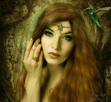 The forest beauty by annemaria48