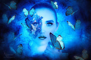 Butterflies dream by annemaria48