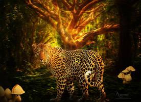 wild life by annemaria48