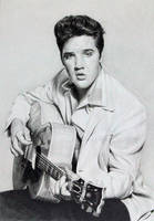 Elvis by CubistPanther