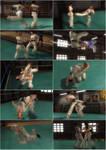 CMR Gi Karate Heraldry Pack with Lisa, Tina + Mila by Gambrinus333