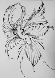 Bird of Paradise by Elliesmeria