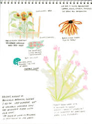 Nature Journal 00011 by fionagh