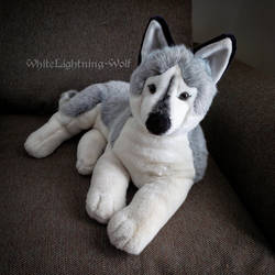 Especially For You Husky Plush by WhiteLightning-Wolf