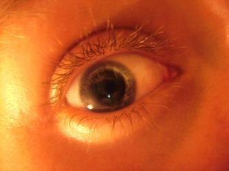 Eye Eye by davetolomy