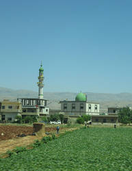 Vegetable mosque by LloydG