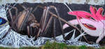 Spider by SR by Wator
