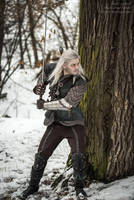 The Witcher books - Geralt by GreatQueenLina