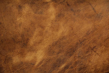 Leather Texture Brown Uneven Pattern Smoth Old Fab by TextureX-com