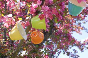 Tea Tree 5 by Sugar-Senshi