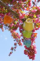 Tea Tree 8 by Sugar-Senshi