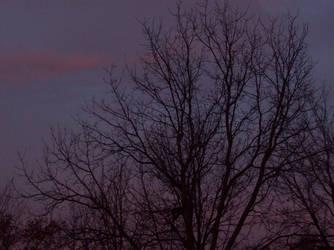 Good Morning by Angel-Escondida