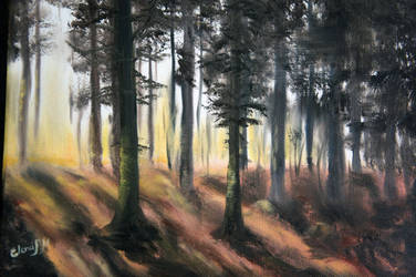 Forest at sunset by elenpak