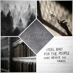 Bataille Gaucudi MoodBoard by MotherMoody