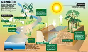 infographic ekohidrology by malesbanget