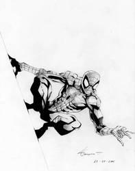 Spiderman - Marvel Comics by marvelmania