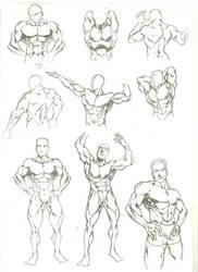 Anatomy Study 2 by marvelmania