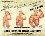 LEARN HOW TO DRAW ANATOMY by marvelmania