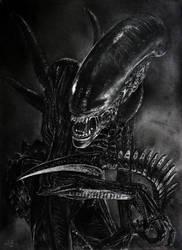 Alien by Shekhina