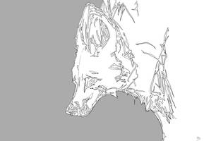 Chrysocyon brachyurus by TheReaperKaj