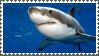 Great White stamp 2 by sandwedge