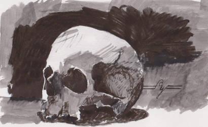 Skull1 by stephenyavorski