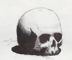 Skull2 by stephenyavorski