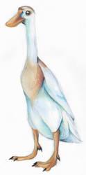 Runner Duck by Kaiser-Ren