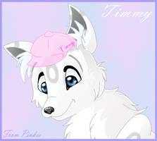 Timmy -1 of 2- by Pinkie-Pichu