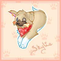 .Skylie. by Pinkie-Pichu