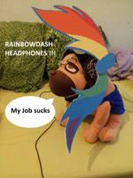 RainBowDash Headphones !! by UnknownEmerald
