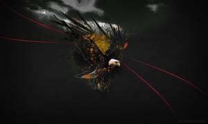 Eagle by elka