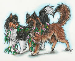 Puppy Love: Tosca and Riot by Rabastan
