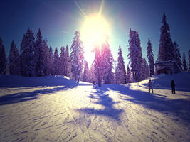 snow eden 2 by sweet-tropic