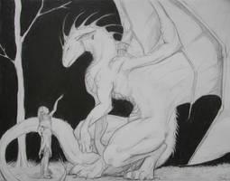 Dragon Tamer by dragon-mystica