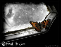 Through the glass by Tyziel