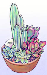 Cacti and Succulents by Jessandeviant