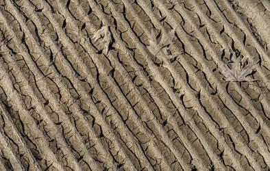 Muddy Texture Stock by redwolf518stock